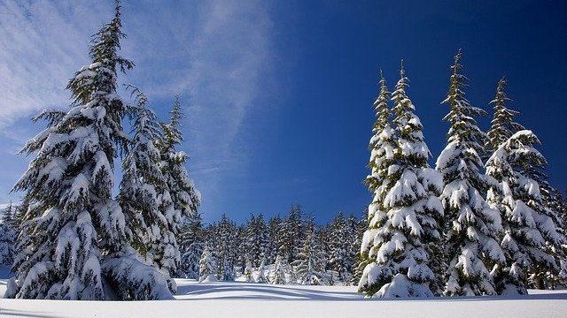 Aus Lager 2020 wird Winterlager 2021